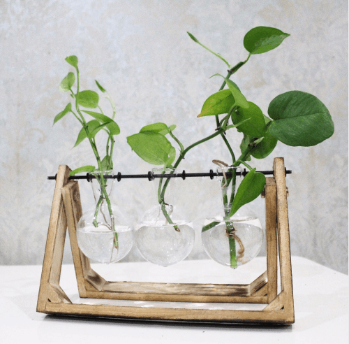 indoor-opt-pant-plant_holder